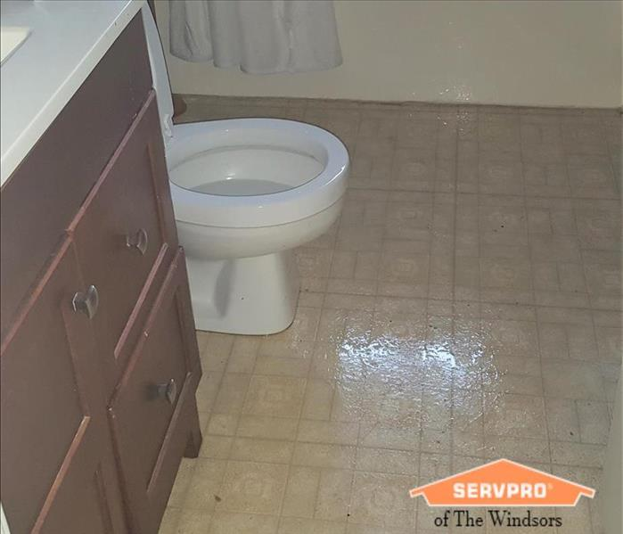 Bathroom with dark wood vanity and light colored vinyl floor SERVPRO of The Windsors Logo