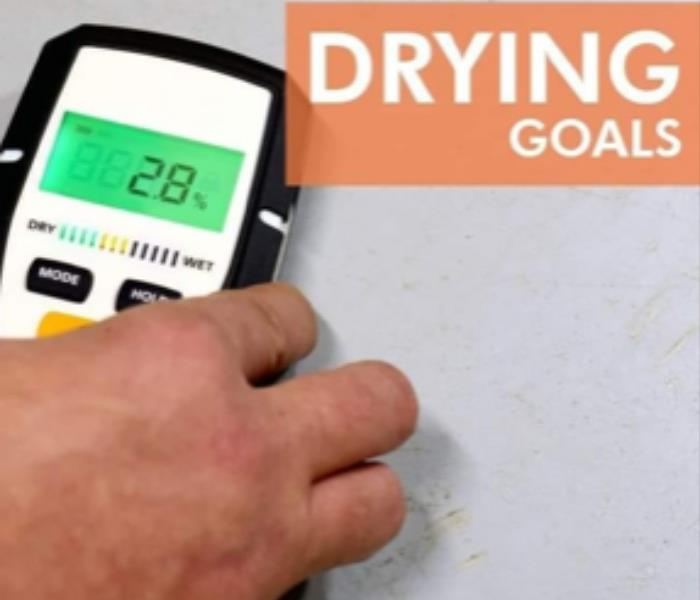 "picture of a moisture meter against a gray wall, hand holidng the meter, meter on reading 29, script-""drying goals"""