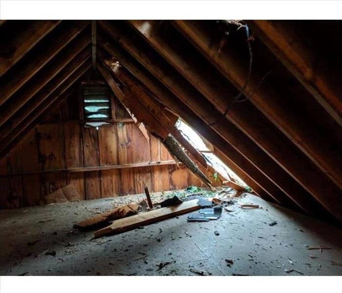 Attic with hanging tree branch breaking through ceiling,roof shingles, and wood from attic framing covering attic floor