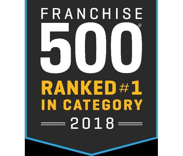 Script -Franchise 500, ranked number one in category, 2018