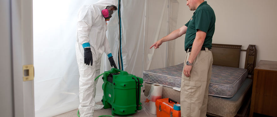 Windsor, CT mold removal process
